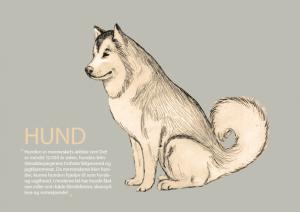 Hund_forside_A5